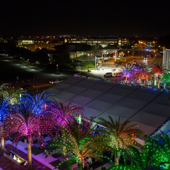 Light Up UCF Light Show