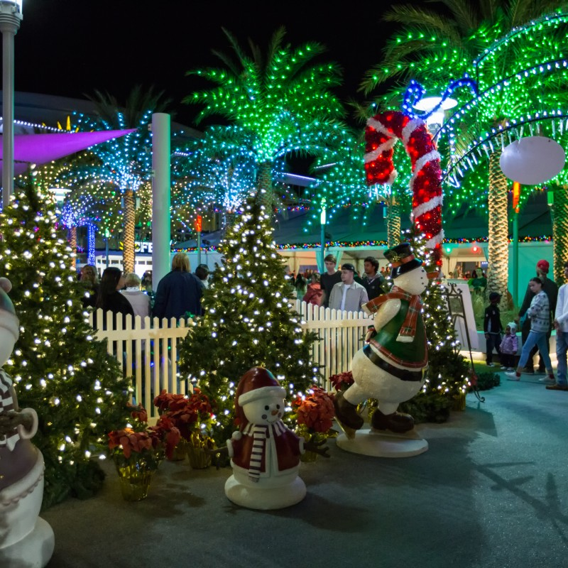 Light Up Lane - Attractions CFE Arena